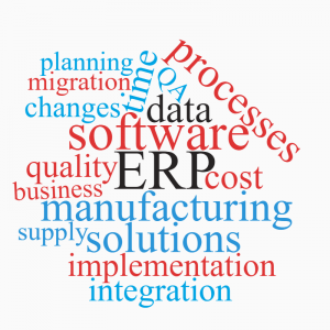 ERP-wordcloud-300x300